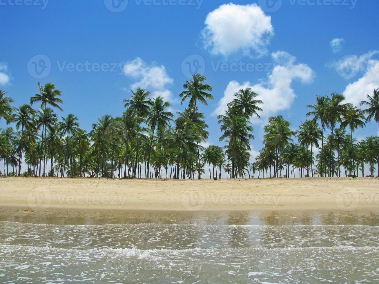 Porto de Galinhas, Brasilien: wunderschöner verträumter tropischer Strand. foto
