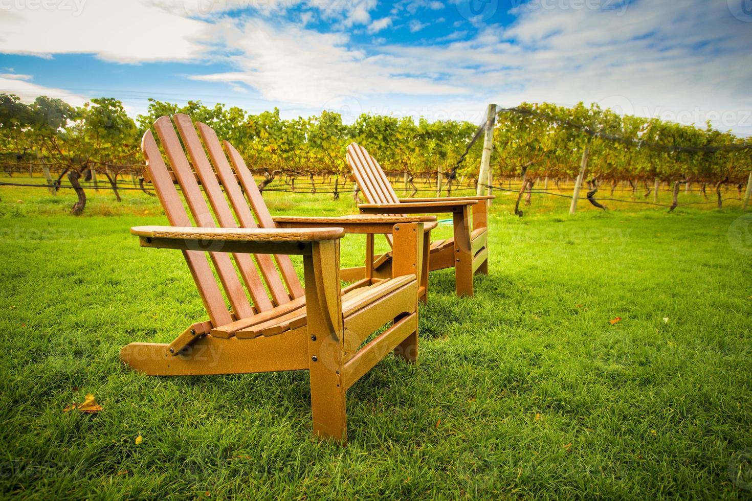 Stühle im Weinberg foto