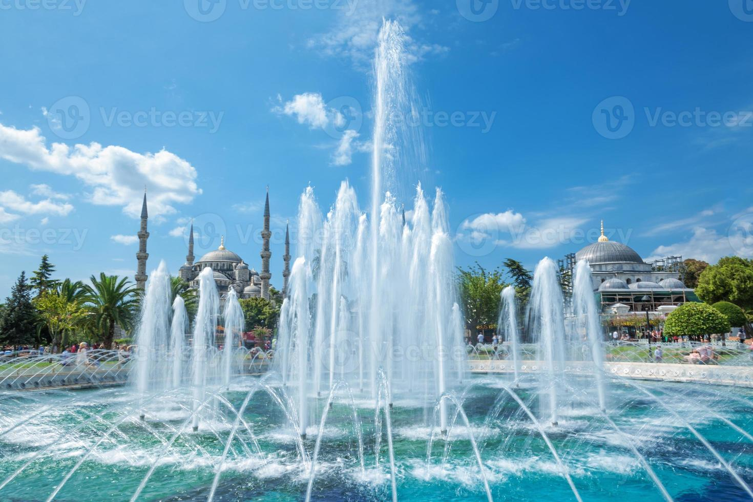 blauer Bosque, Sultanahmet in Istanbul Truthahn foto