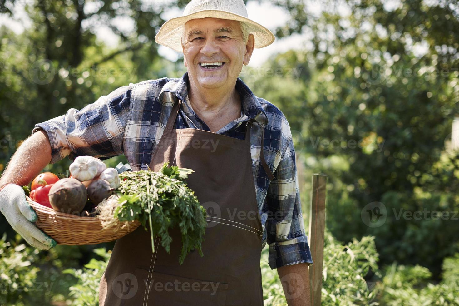 Mein Gemüse ist immer frisch und gesund foto