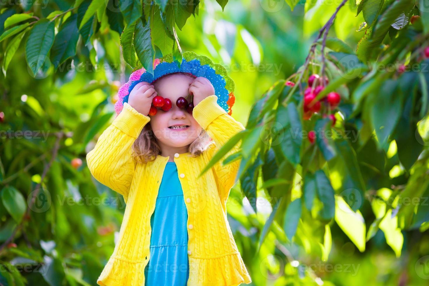 süßes kleines Mädchen, das frische Kirsche auf einer Farm pflückt foto