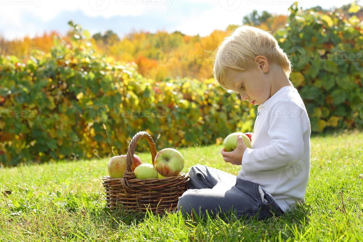 kleines Kind, das mit Äpfeln am Obstgarten spielt foto