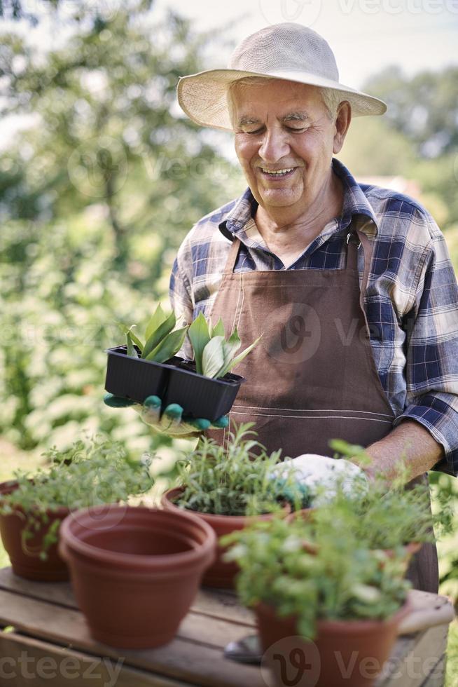 Gartenarbeit ist ein Hobby älterer Menschen foto