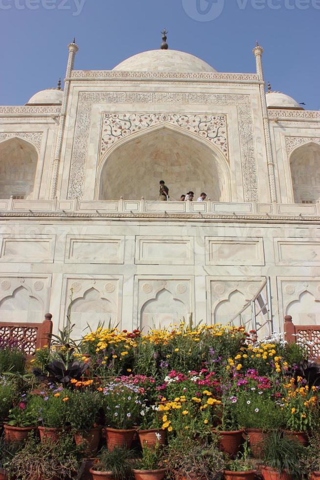 Taj Mahal Nahaufnahme foto