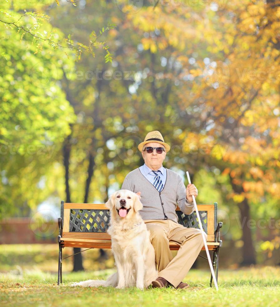 älterer blinder Herr, der mit seinem Hund auf einer Bank sitzt foto