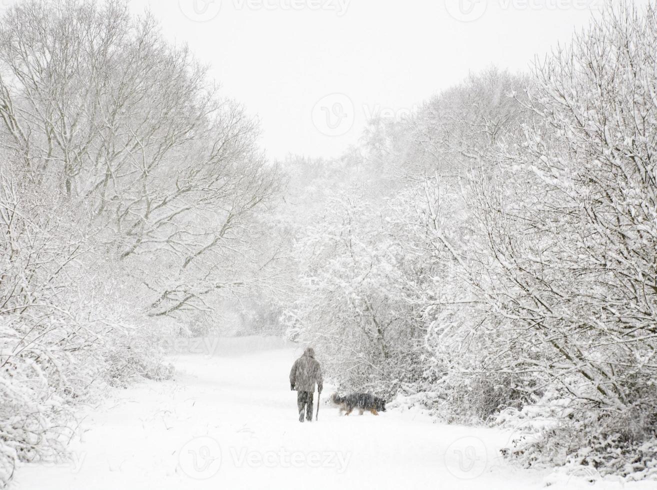 Mensch und Hund im Schnee foto