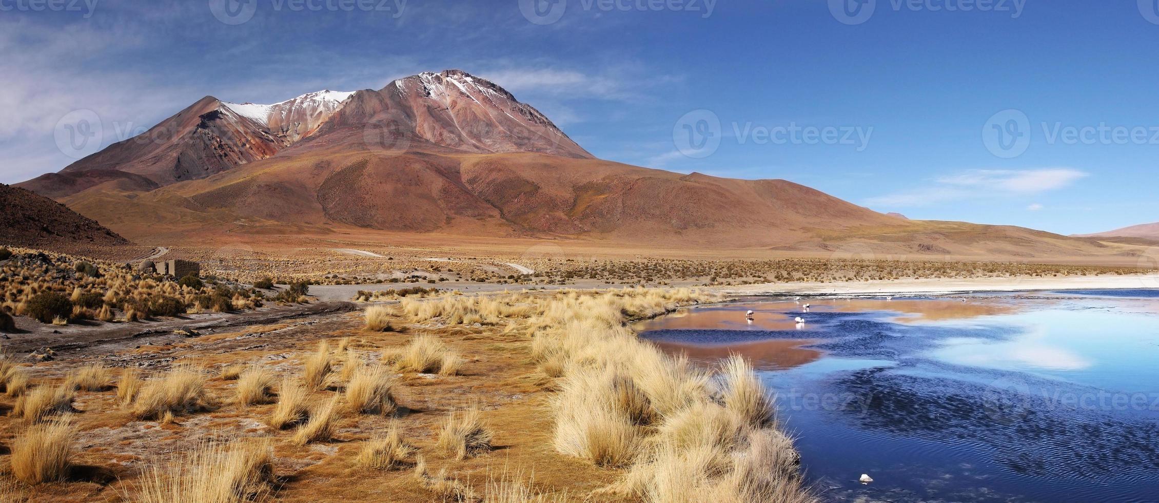 Altiplano und Licancabur Berg foto