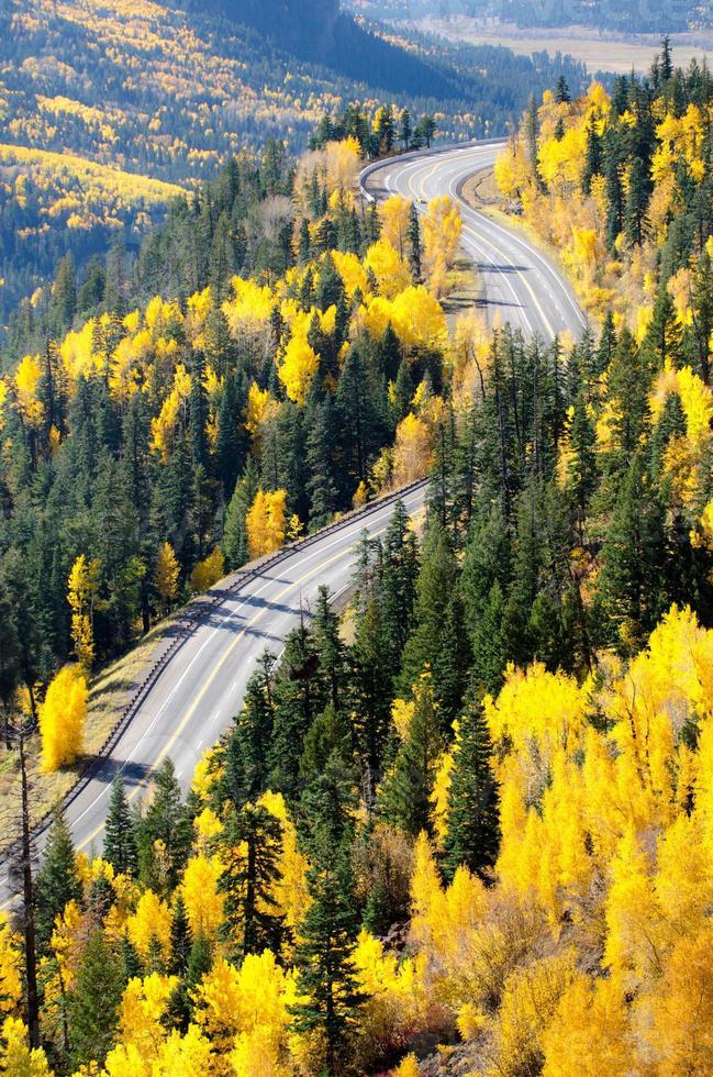 Straßenberg-Herbst-Draufsicht, am Wolfsbach, Colorado foto