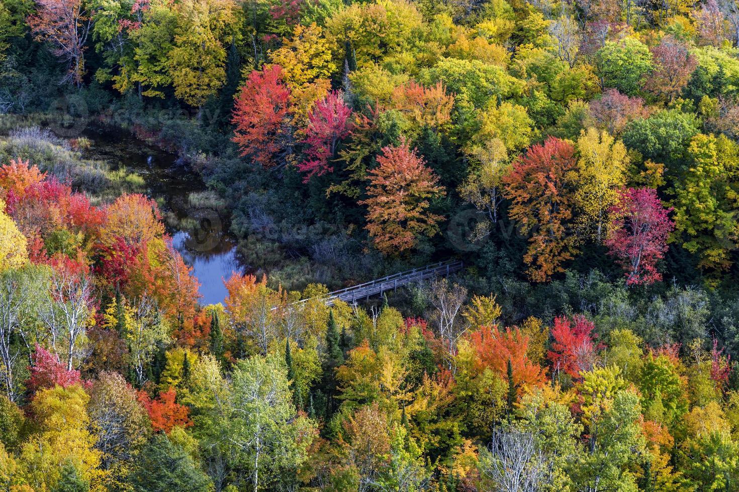 fällt Farben am Karpfenfluss, Porcupine Mountains State Park foto