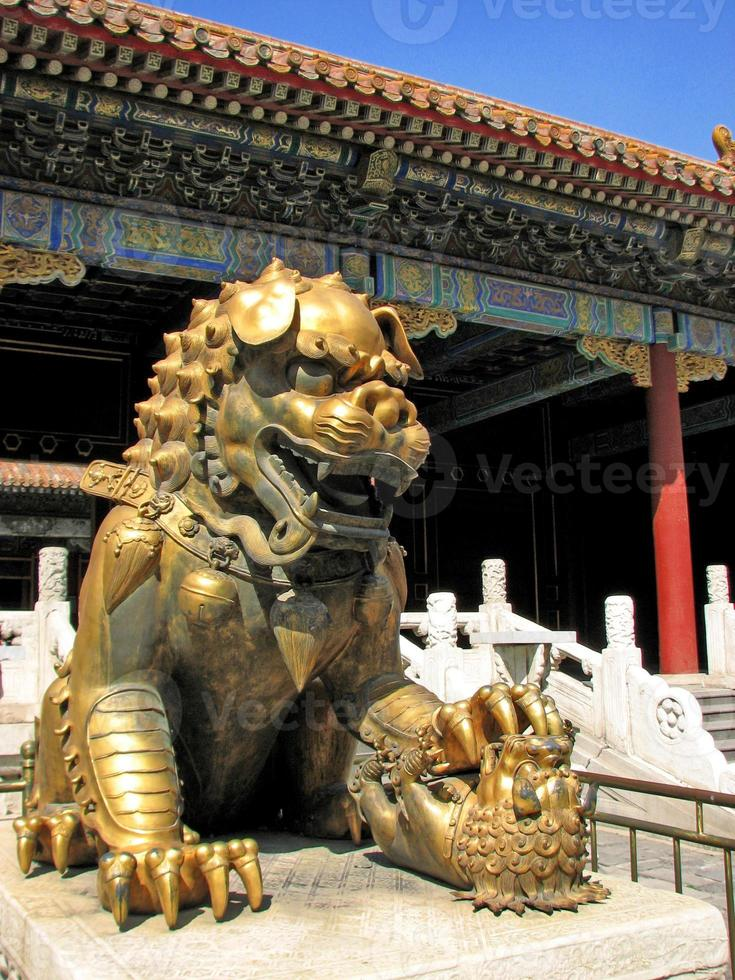 vergoldete Löwenstatue, verbotene Stadt, Peking foto