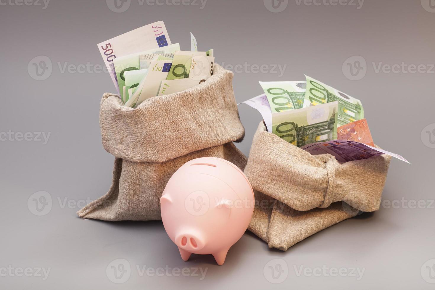 Zwei-Geld-Tasche mit Euro und rosa Sparschwein foto
