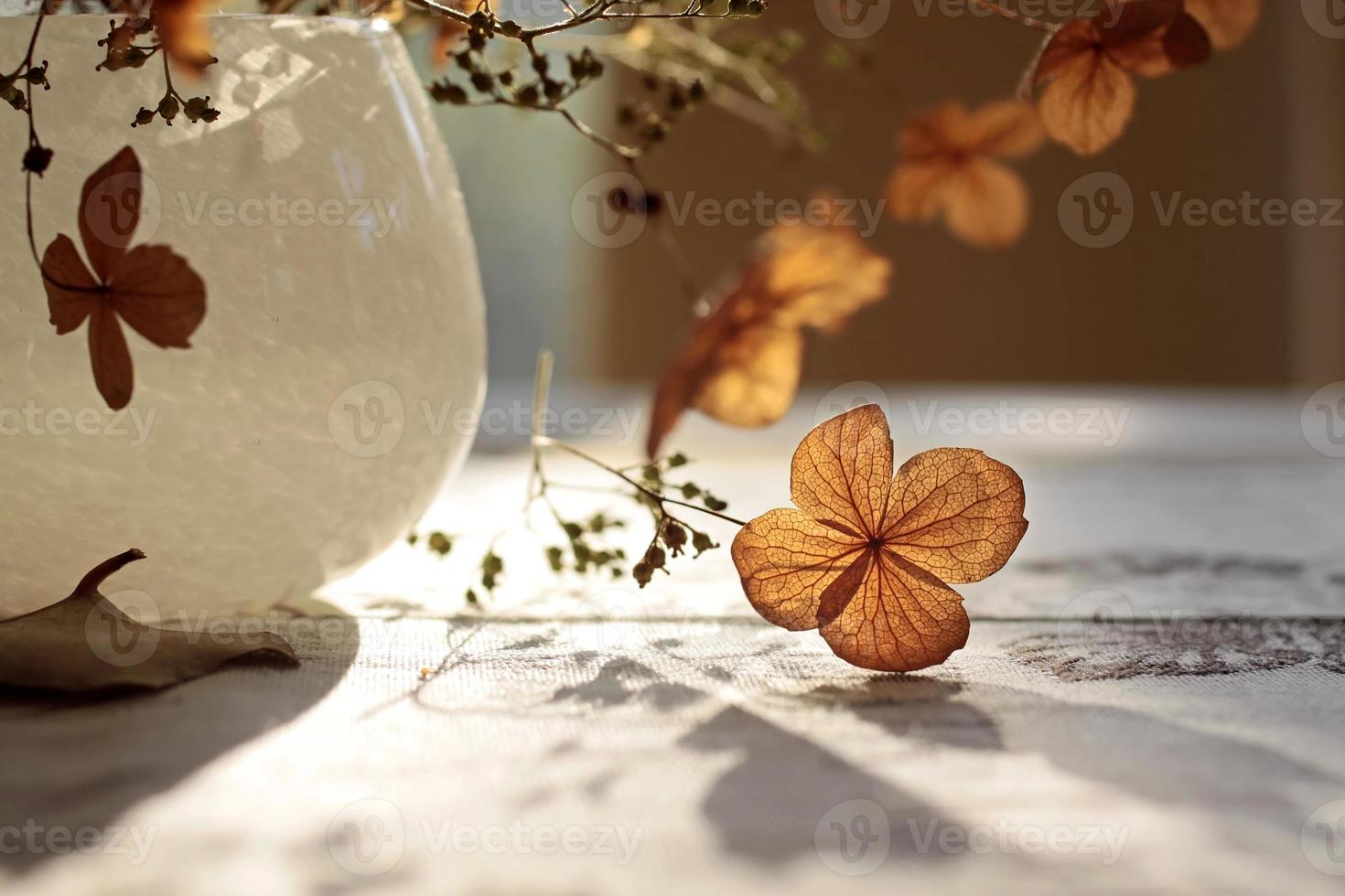 Herbstdekoration foto