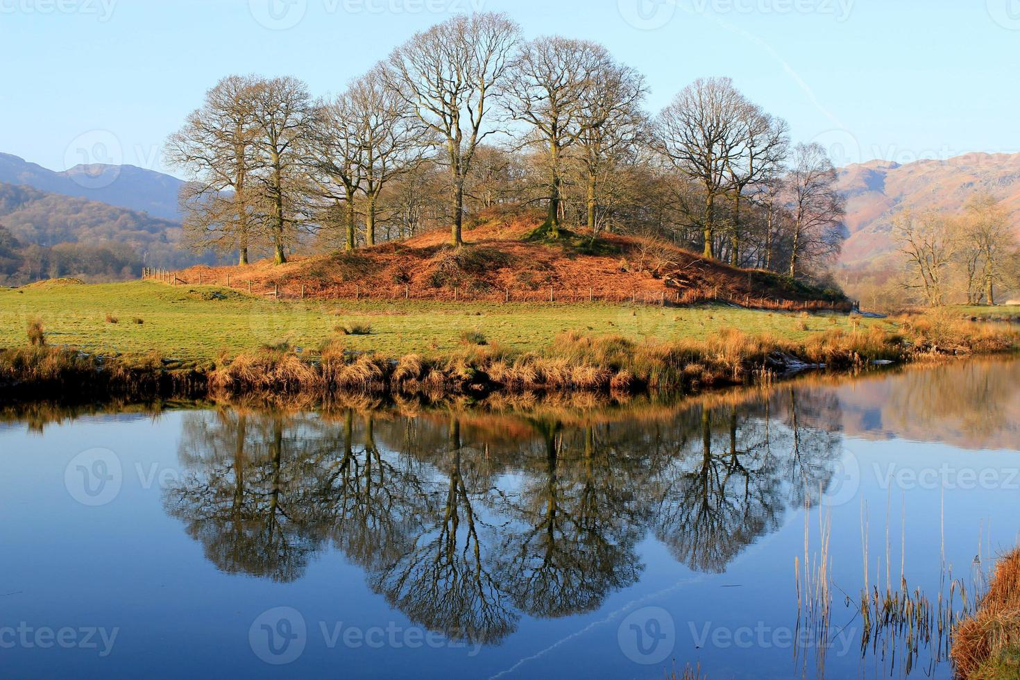 atemberaubende Reflexion von Bäumen in einem stillen See foto