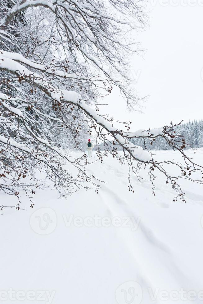 Frau mittleren Alters Schneeschuhwandern foto