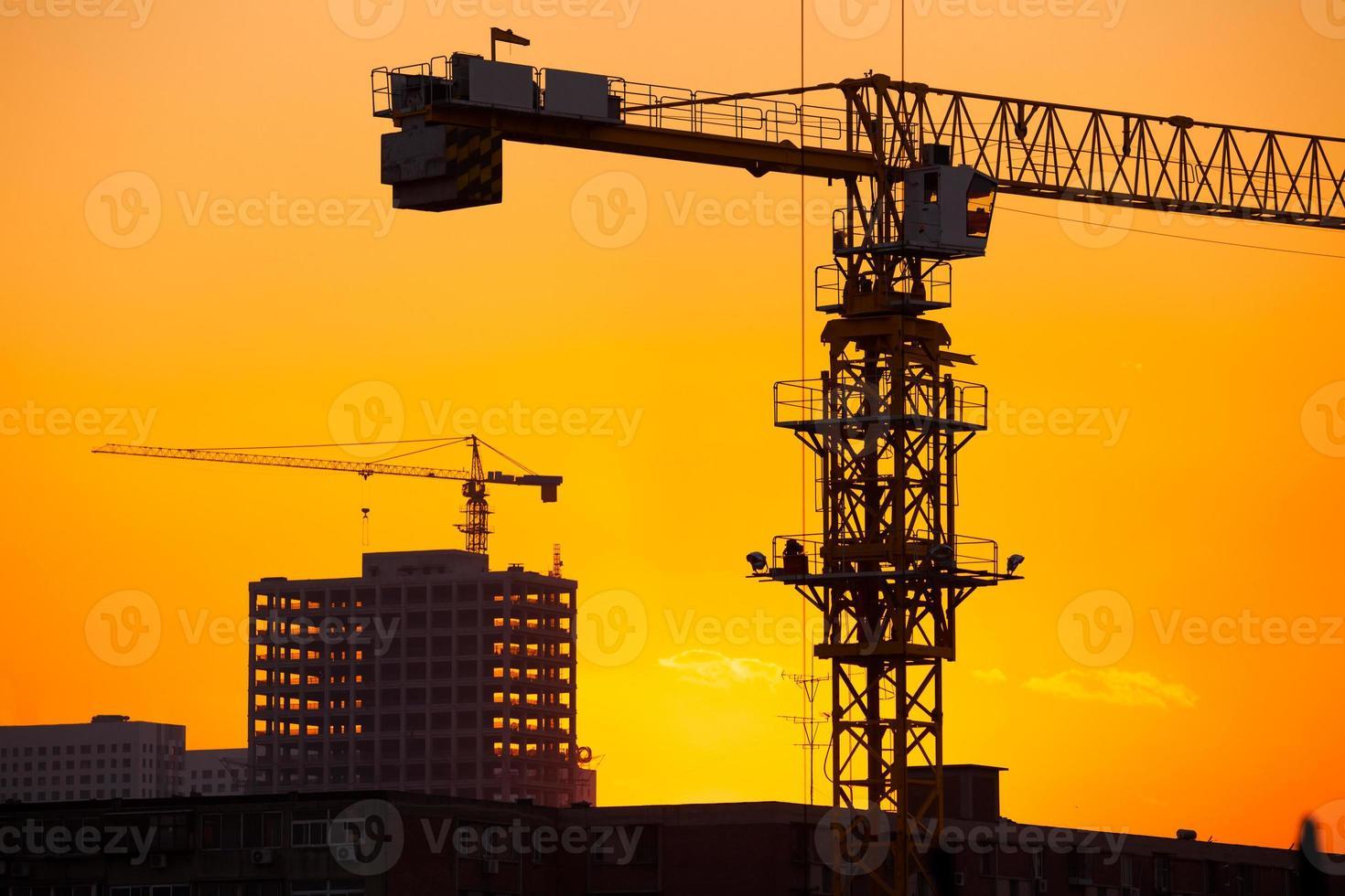Kraniche auf einem Sonnenunterganghintergrund foto