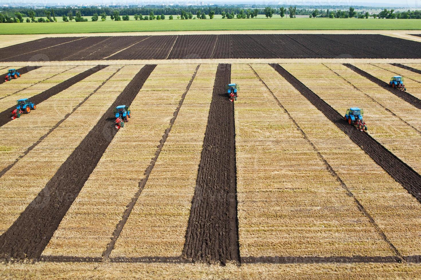 blaue Traktoren 3 foto