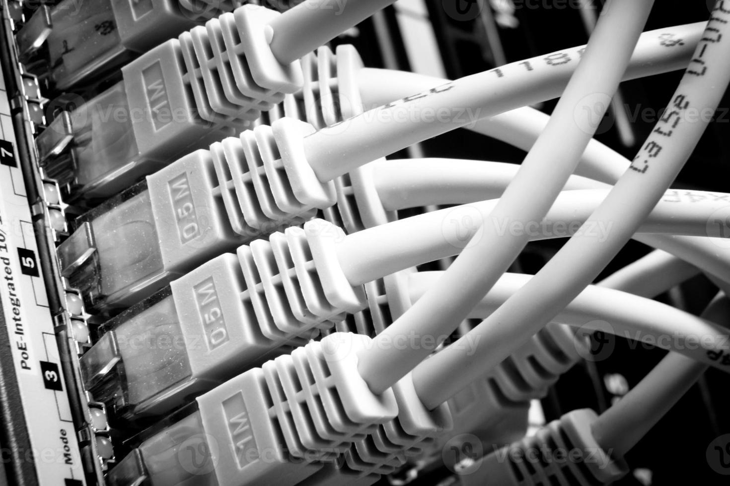 Netzwerkkabel foto