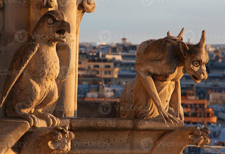 Wasserspeier von Notre Dame foto