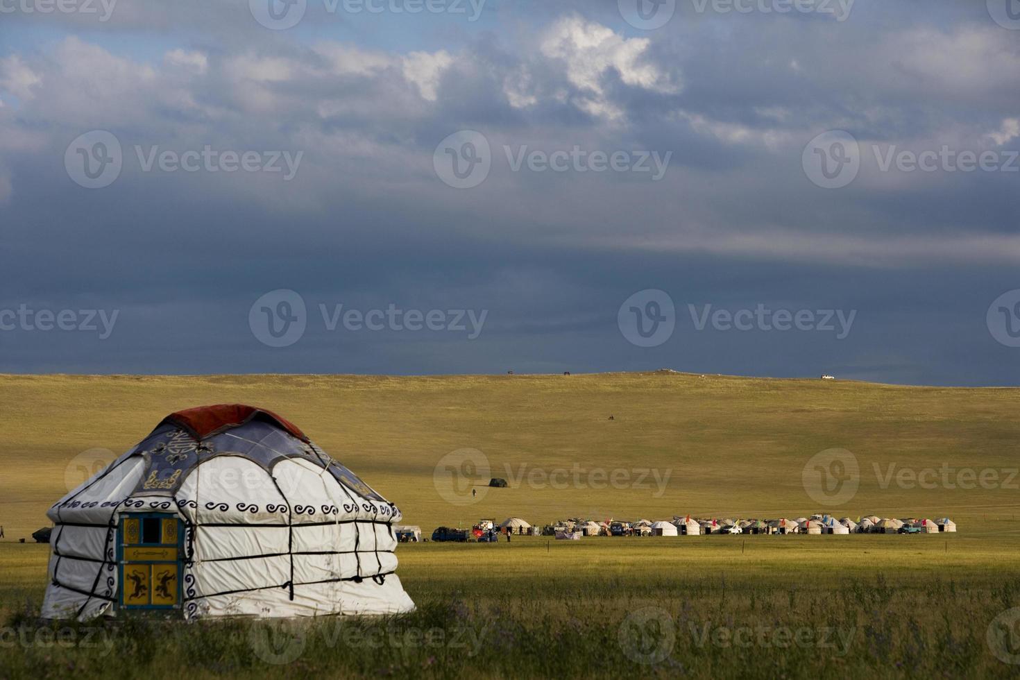 Grasland unter dunklen Wolken foto