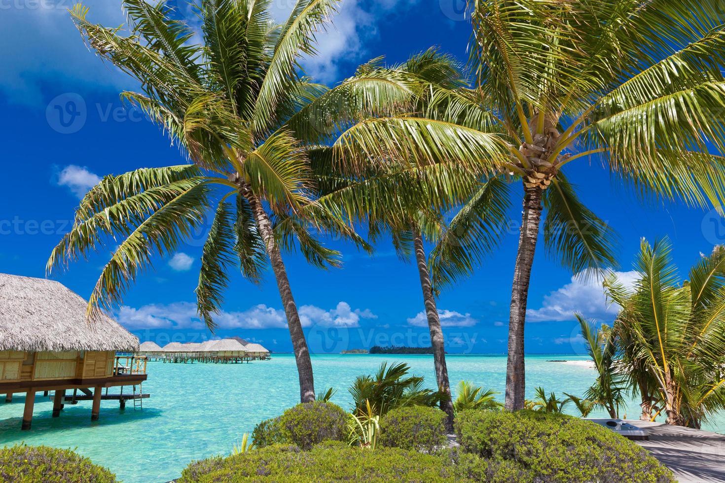 tropisches Inselparadies foto