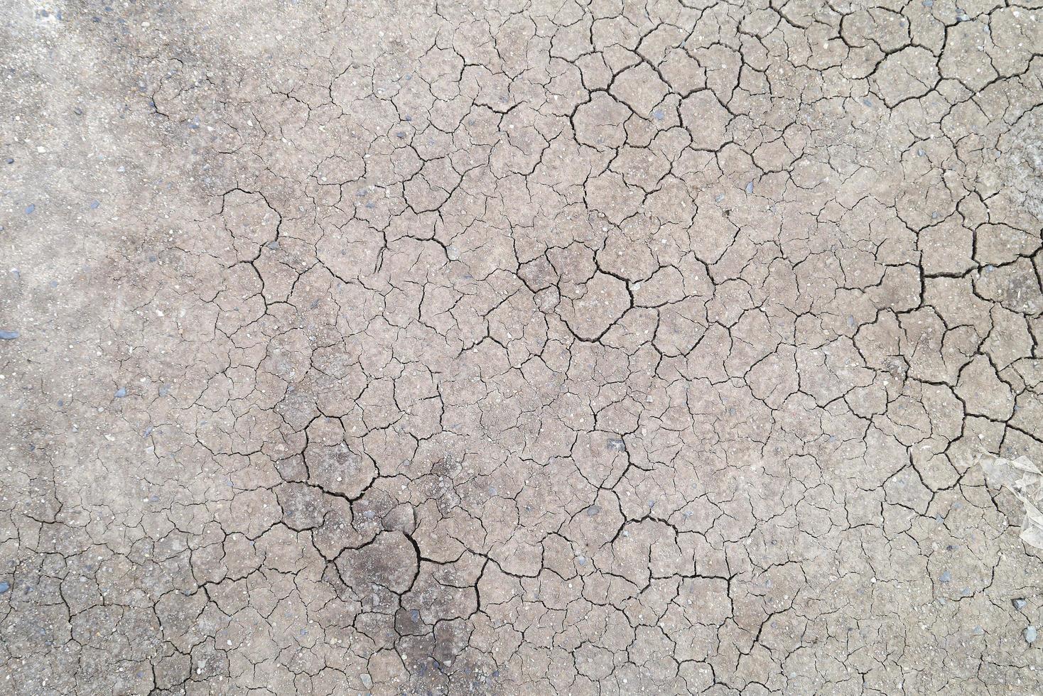 rissige Erde foto