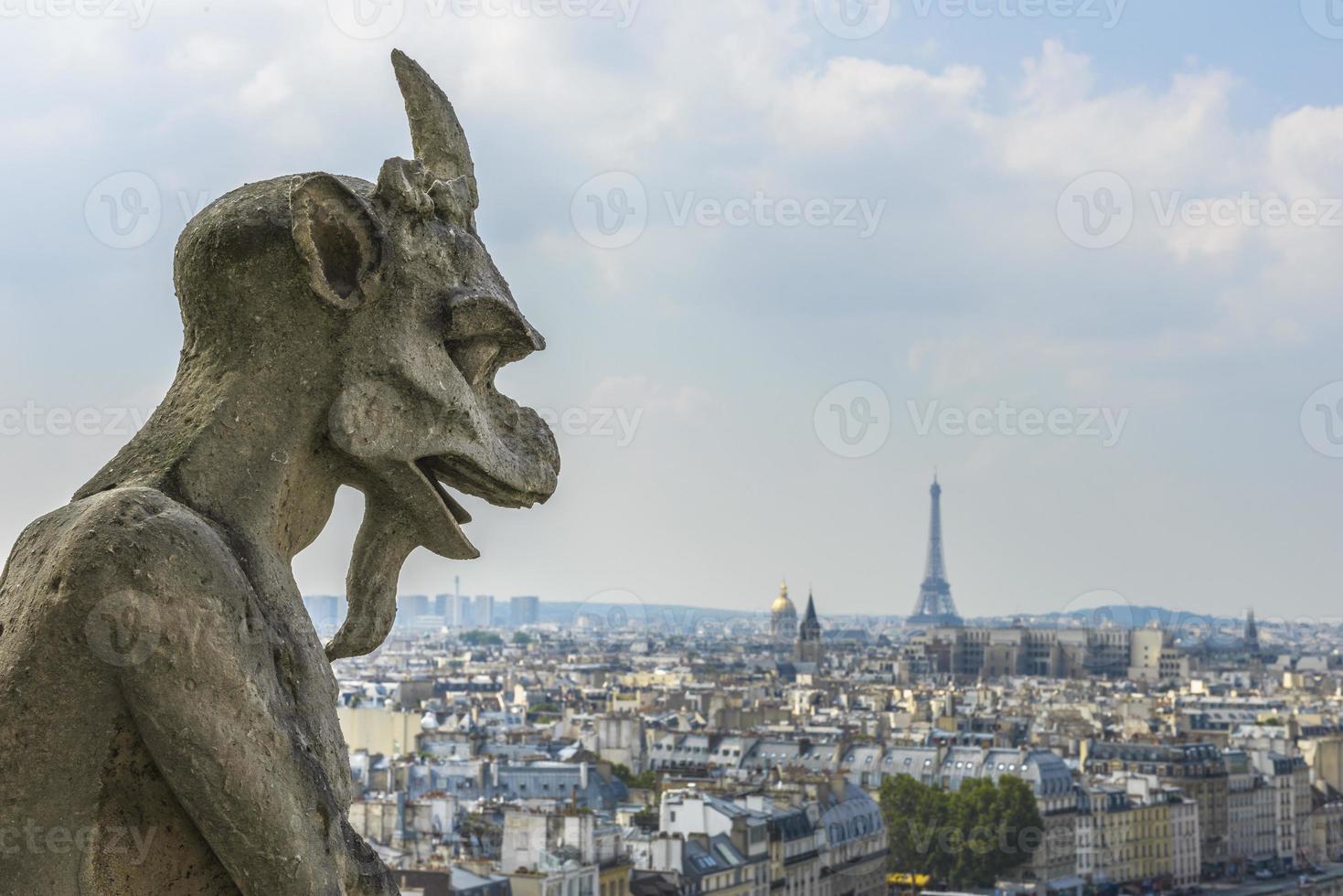 Luftaufnahme von Paris von Notre-Dame foto