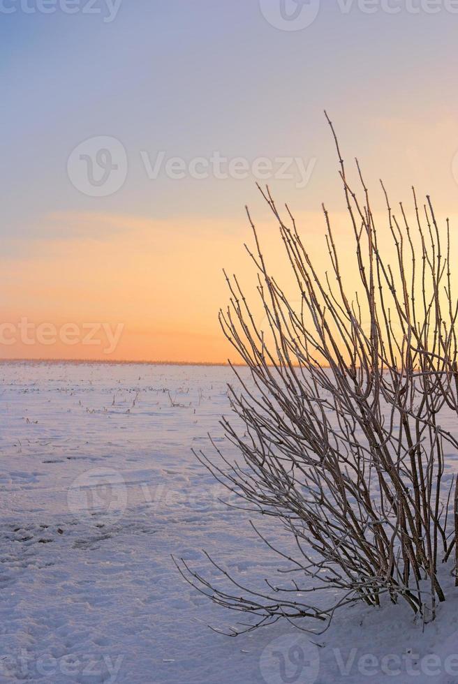 romantische Winterzeit foto