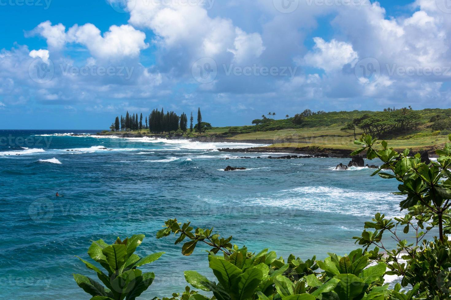 die Küste von Maui, Hawaii foto