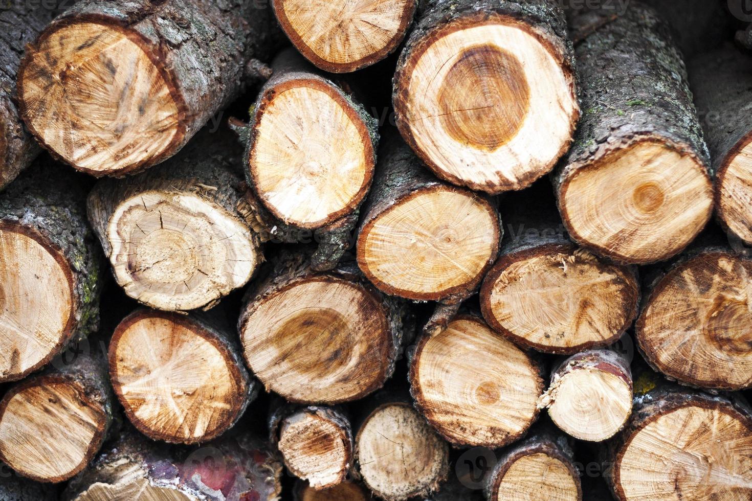 Brennholz gestapelt foto