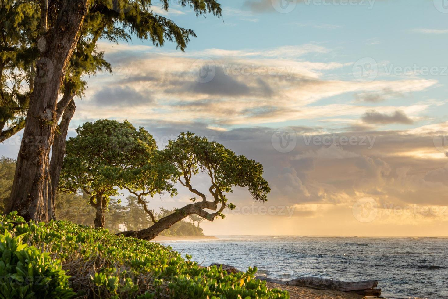 Sonnenaufgang Kauai foto