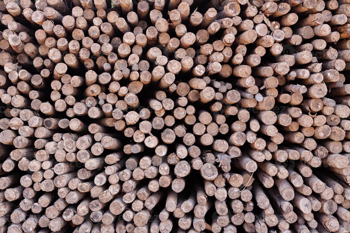 gestapeltes Holz foto