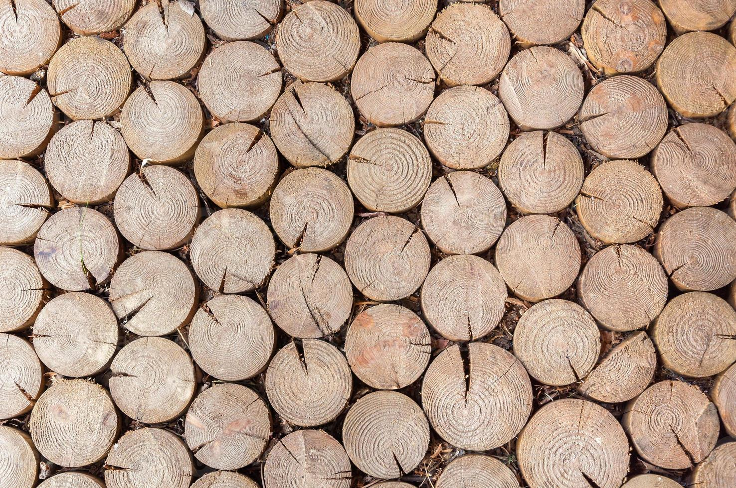 Hintergrund aus Brennholz Protokollen foto
