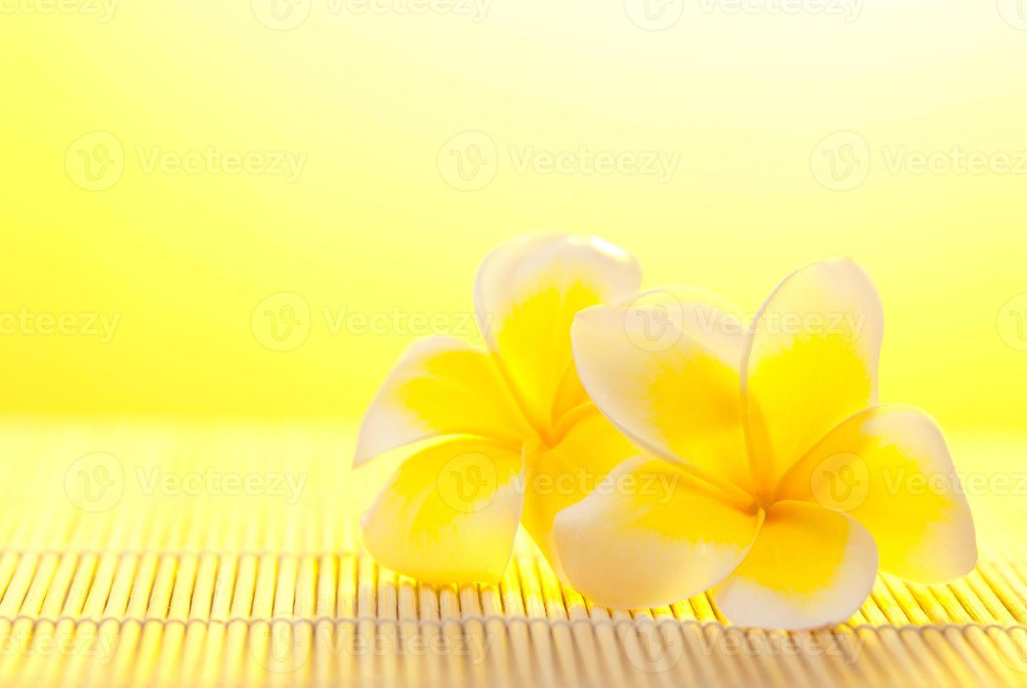 Leelawadee-Blume auf Bambushintergrund foto