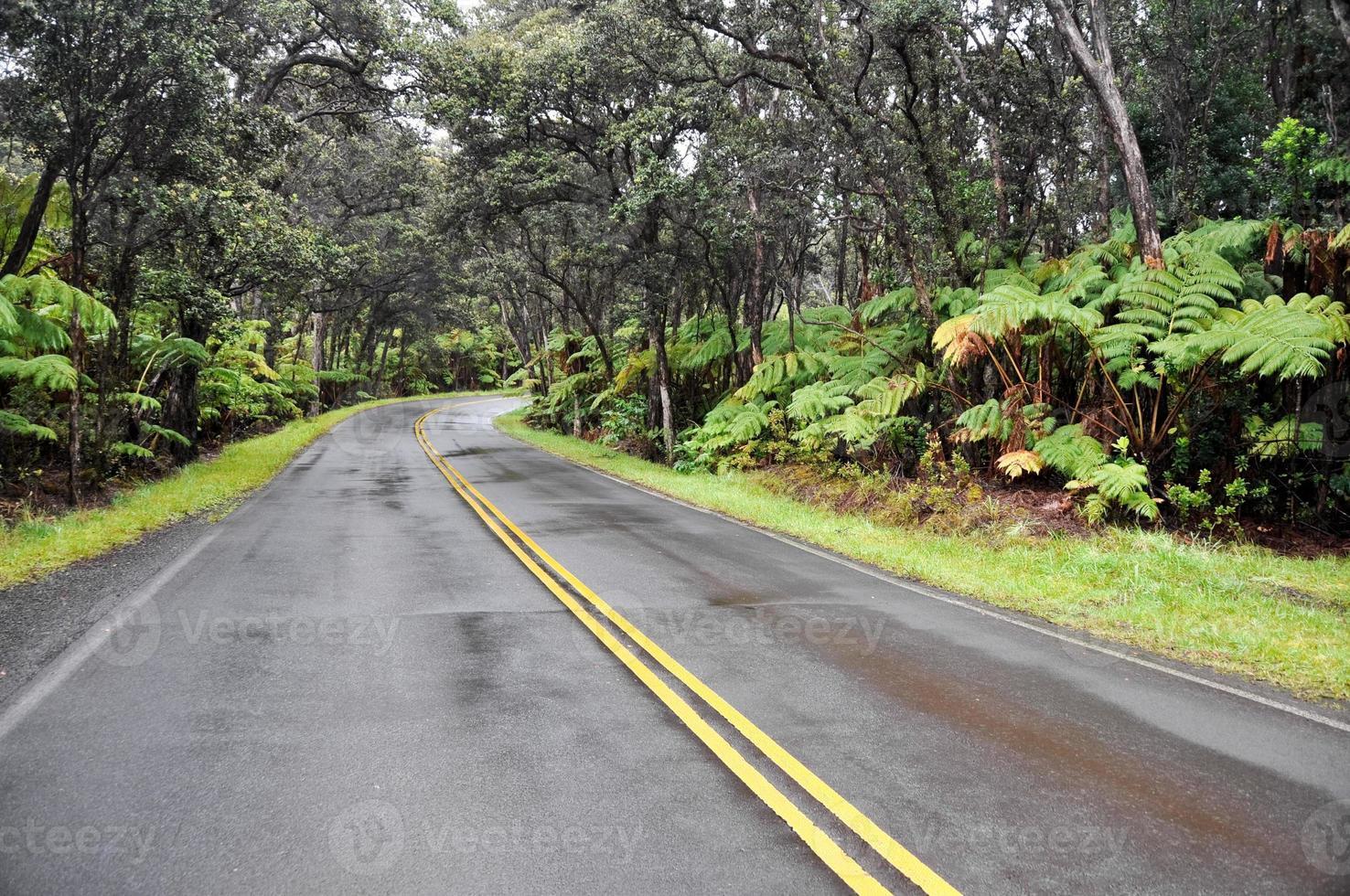 Kette von Kratern Straße, Hawaii Vulkane Nationalpark (USA) foto