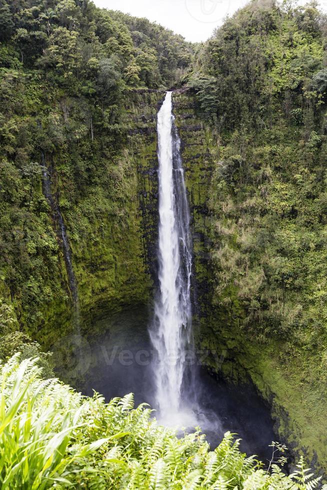 schöner wasserfall auf hawaii foto