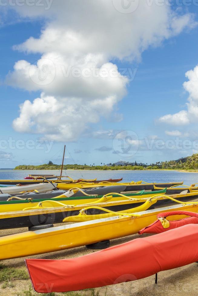 Maunalua-Ausleger foto