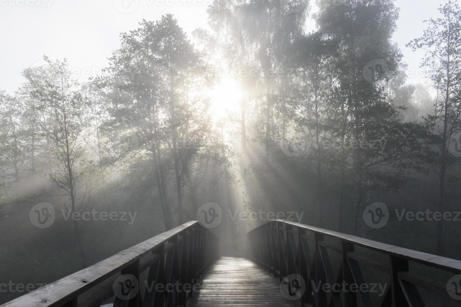 neblige Landschaft mit alter Brücke und Baumschattenbild foto