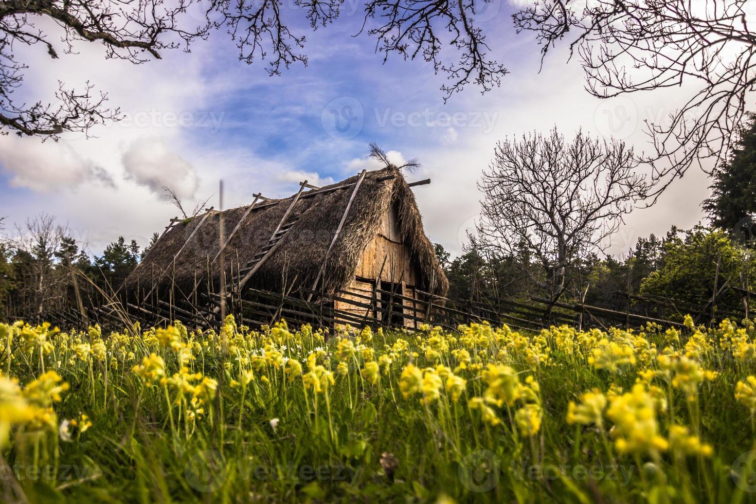 Wikingerhaus in Gotland, Schweden foto