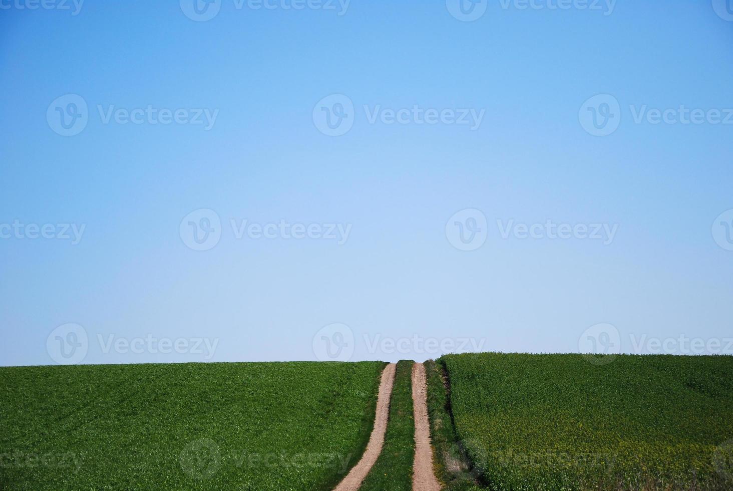 Landstraße zu den Feldern foto