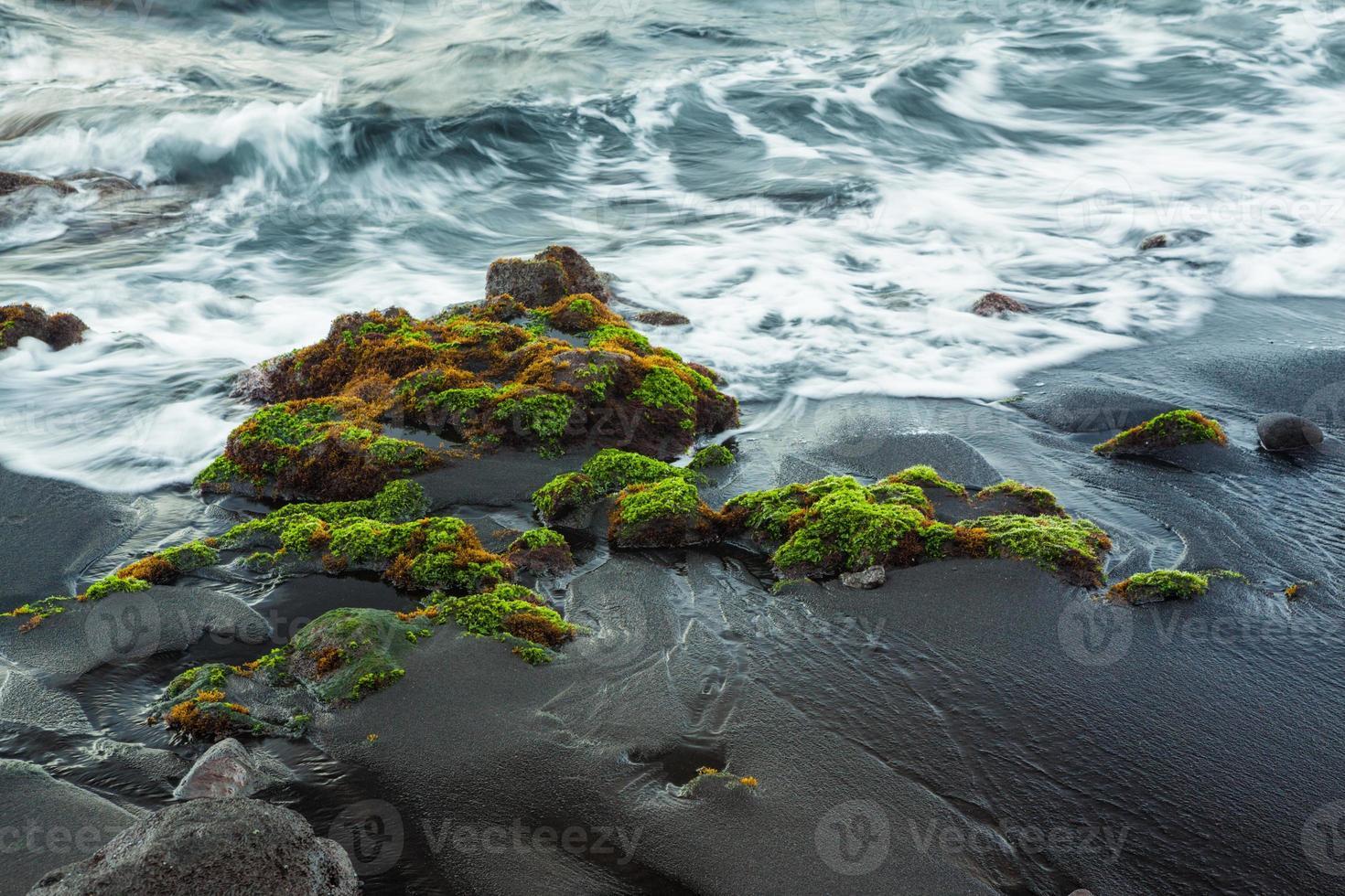 Strandfragment foto