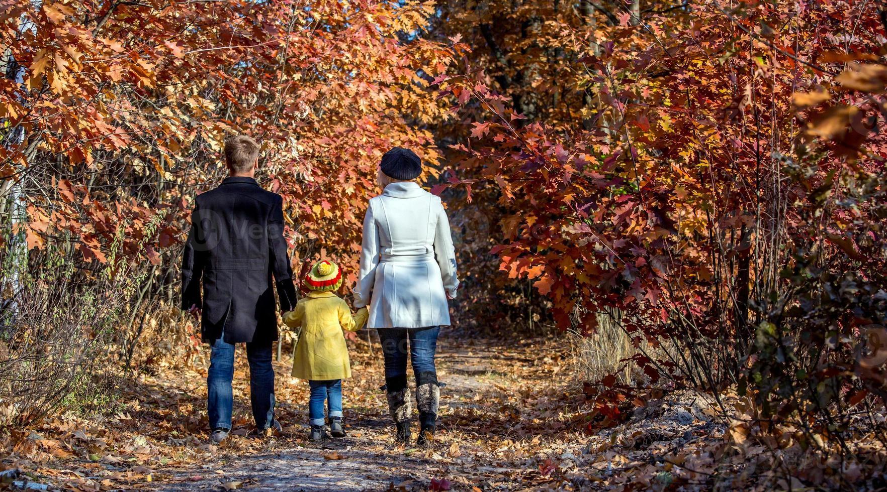 Familie der zwei Generationen, die in der Rückansicht des herbstlichen Waldes geht foto
