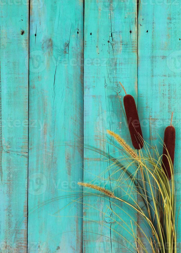 Rohrkolben Grenze antiken blauen Holzzaun foto