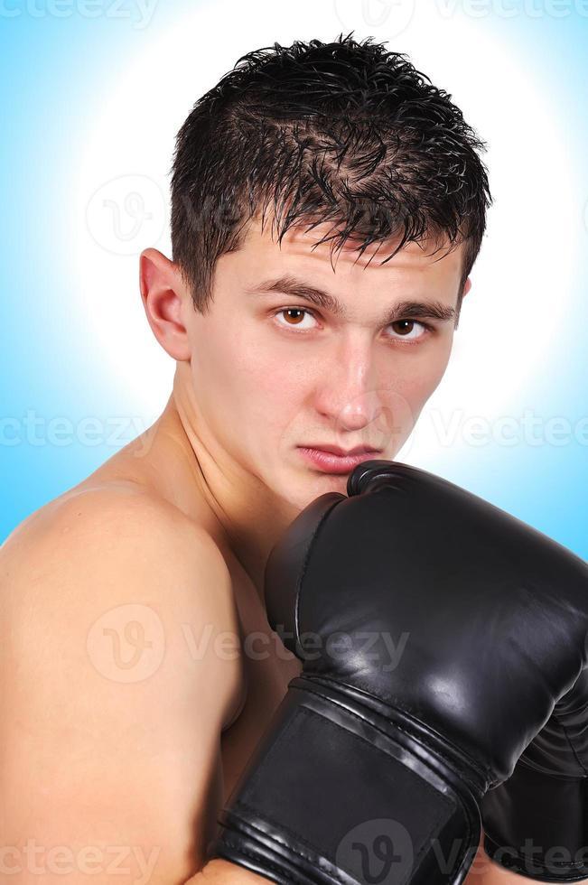 Porträt Boxer foto