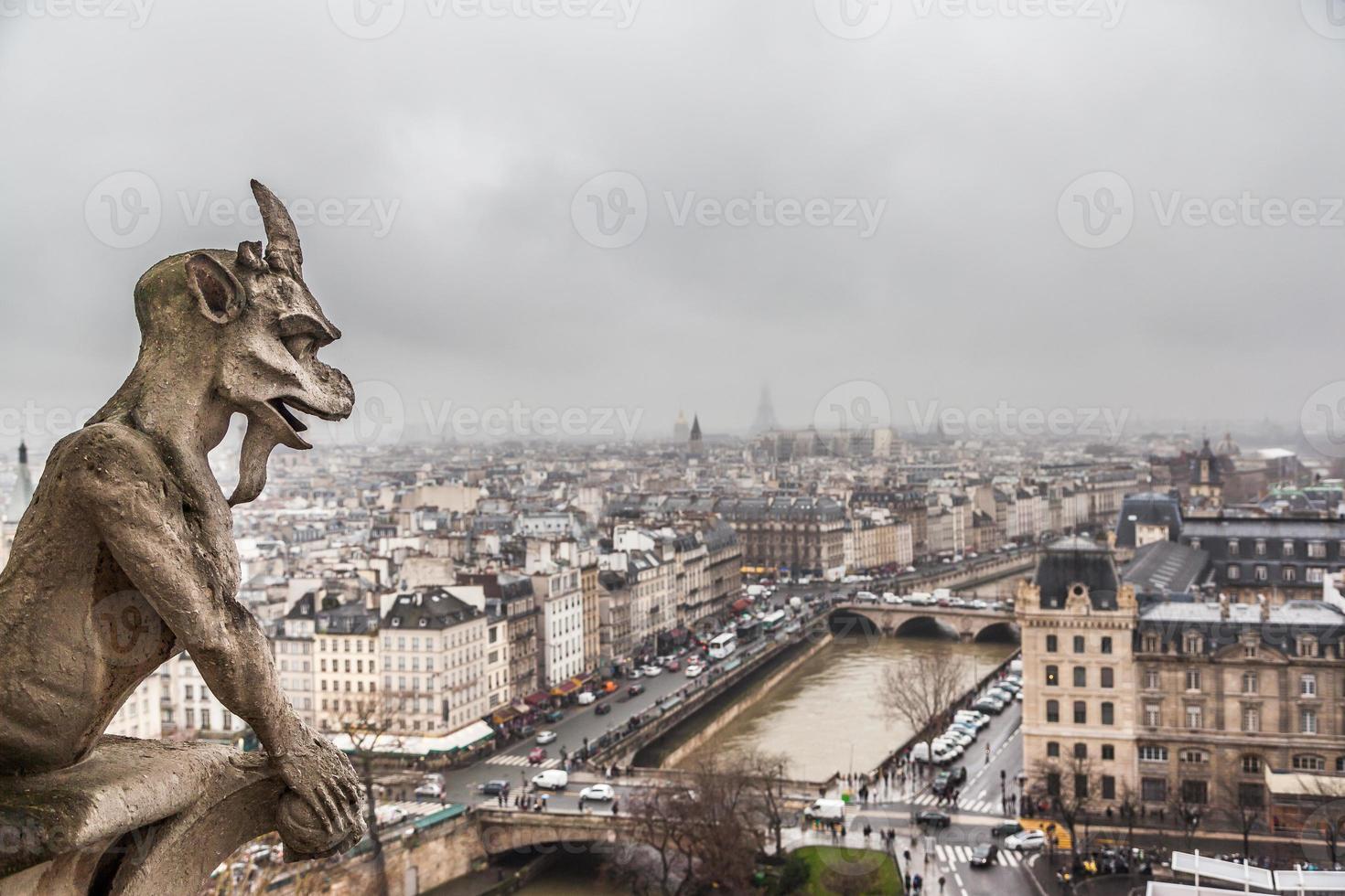 Wasserspeier und Paris Skyline foto