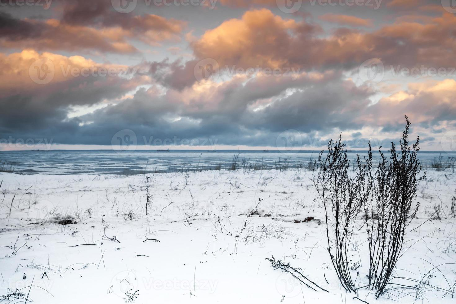 Winterküstenlandschaft mit trockenem Gras foto