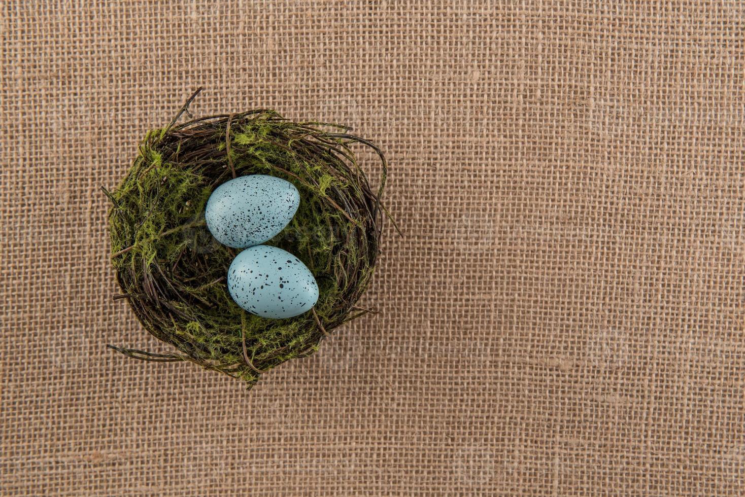 blau gesprenkelte Eier im Nest foto