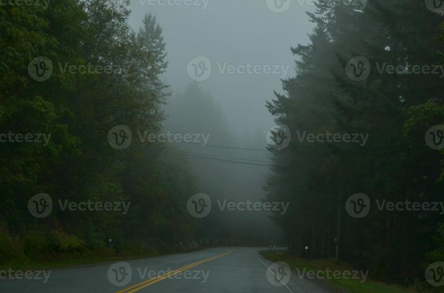Nebel auf der Straße foto