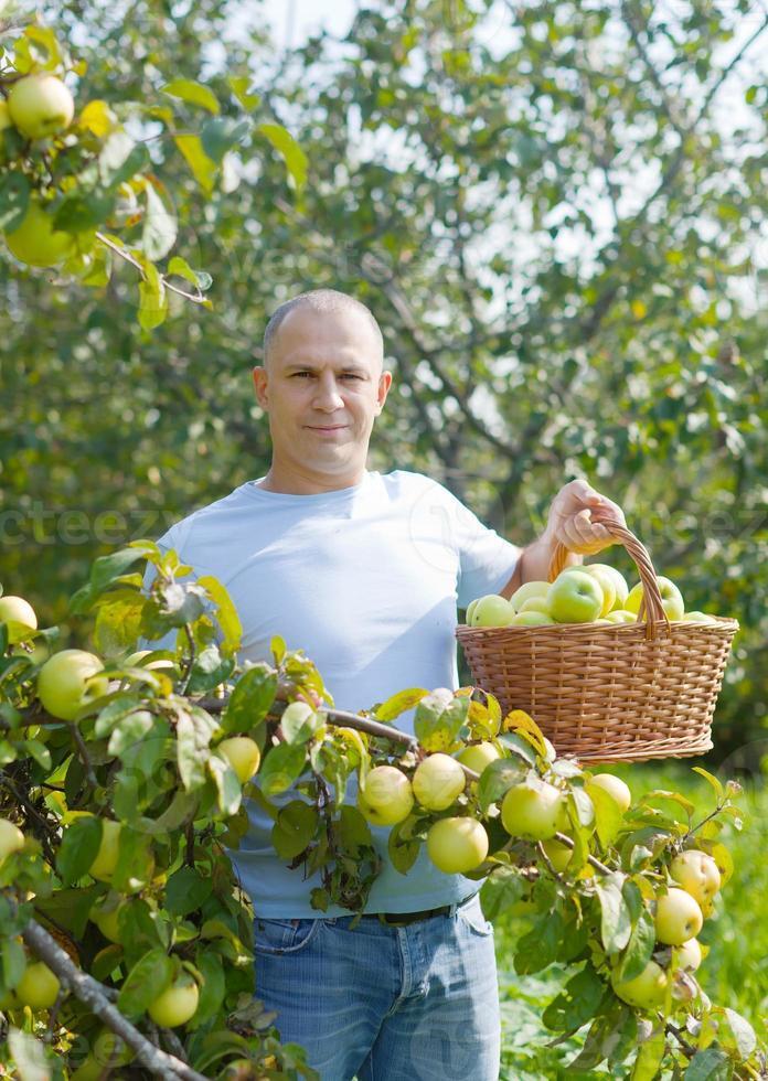 Mann im Apfelgarten foto