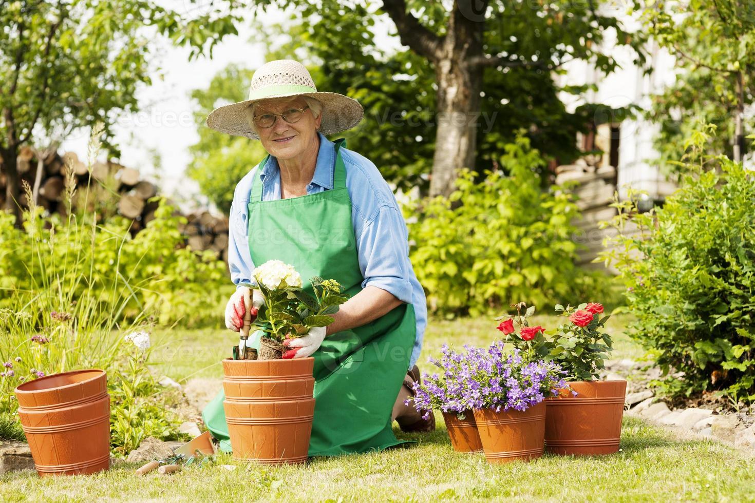 ältere Frau mit Blumen im Garten foto
