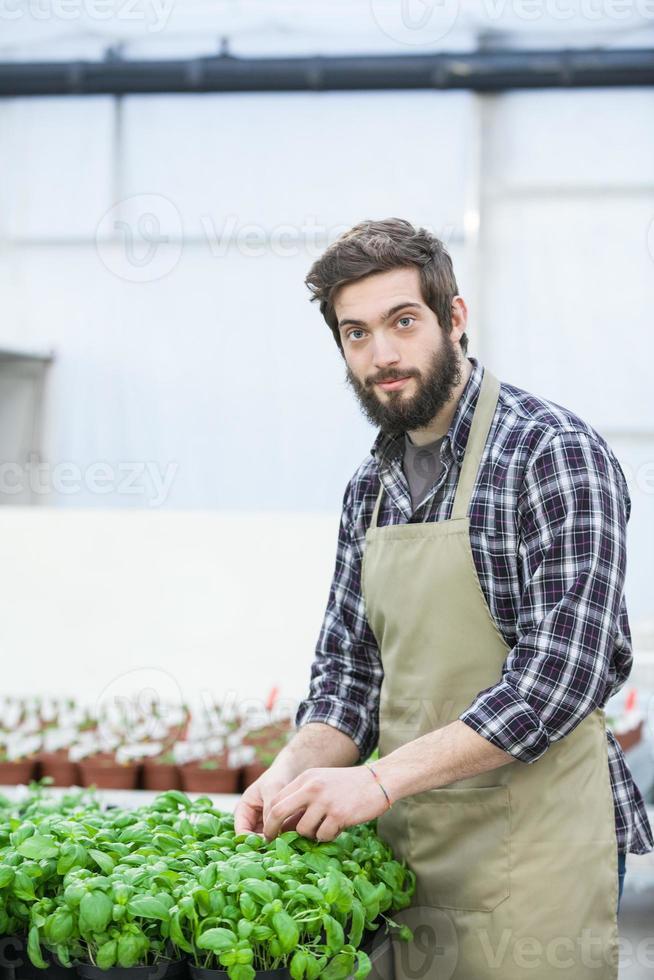 männlicher Florist, der drinnen arbeitet foto